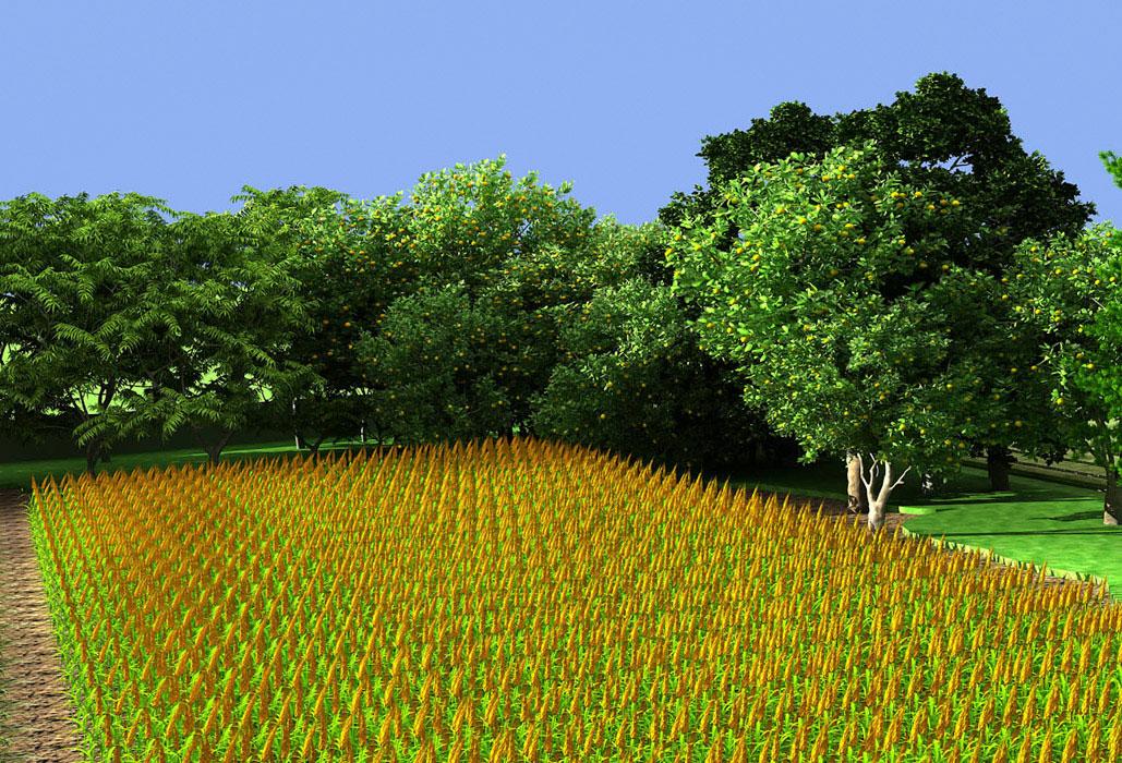 Peepal Orchard Farms