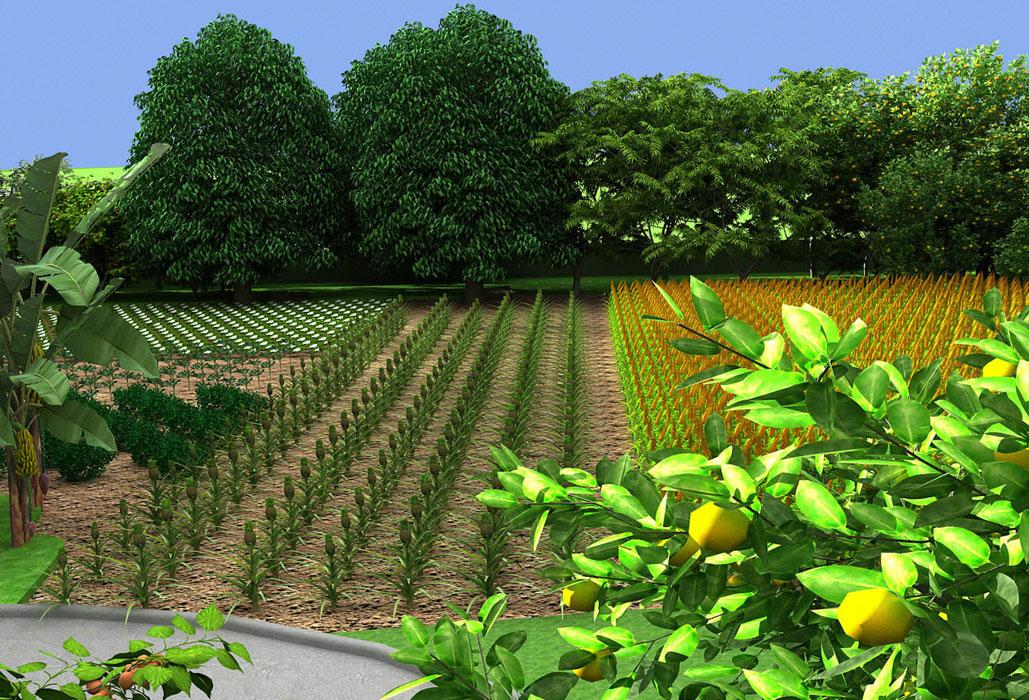farm house for sale in delhi news wilkinskennedy com u2022 rh news wilkinskennedy com